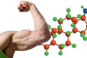 Как восстановить тестостерон у мужчин